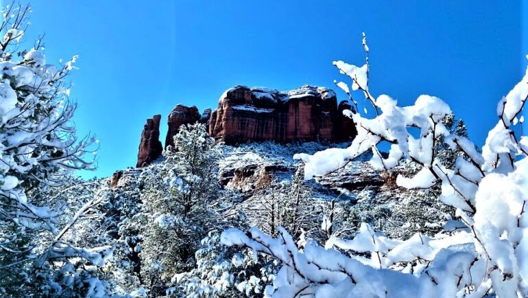 Snowy Cathedral Rock Through the Branches