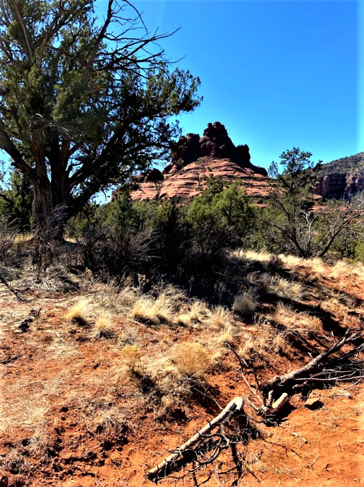 Back of Bell Rock Courthouse Butte Trail Sedona AZ