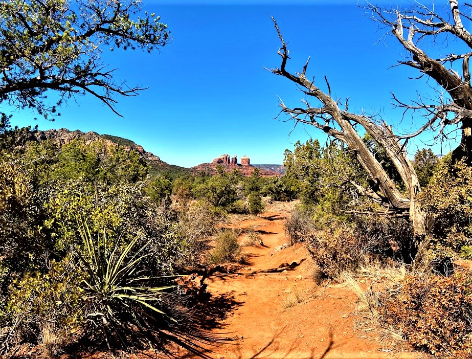 Cathedral and Seven Apaches from Courthouse Butte Trail Sedona AZ